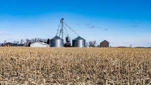 Transformação e Comercialização de Produtos Agrícolas_2